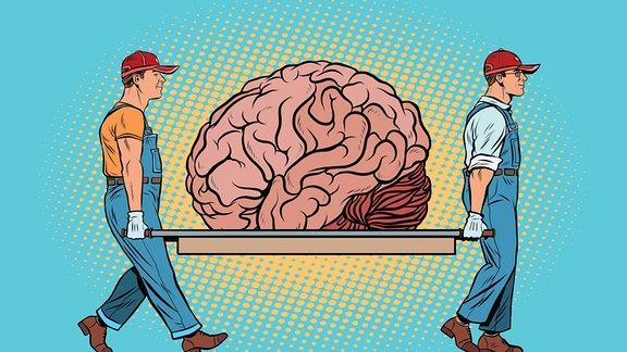 Illustration - zwei Männer tragen ein Gehirn