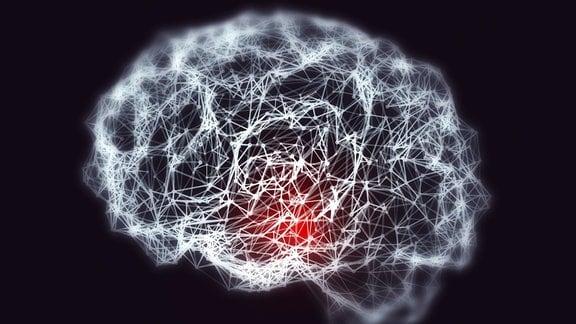 Gehirn, neuronales Netzwerk