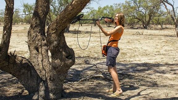 Die Biologin Annegret Grimm-Seyfarth auf der Suche nach den Tagesverstecken der Geckos in einem Eukalyptusbaum. Mit einer Radiofrequenzantenne werden die Individuen, die mit einem Passivsender ausgestattet wurden, angepeilt