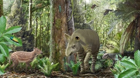 Grafik - Urpferd und Tapir