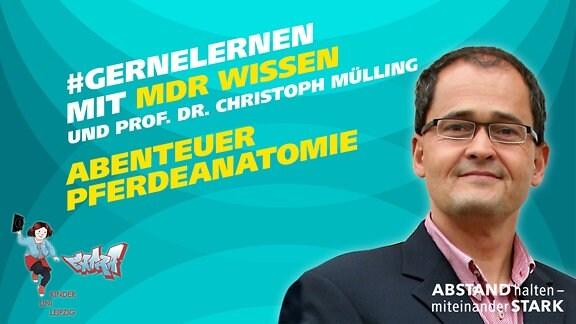 Grafik Prof. Dr. Christoph Mülling