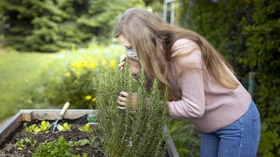 Frau mit Maske riecht an einem Rosmarin