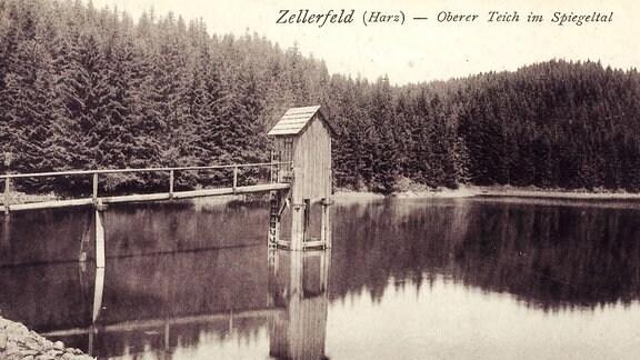 Zellerfeld, Oberer Teich im Spiegeltal, historische Aufnahme