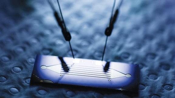 Gold-Nanopartikel