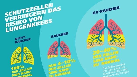 Grafik Lungenkrebs