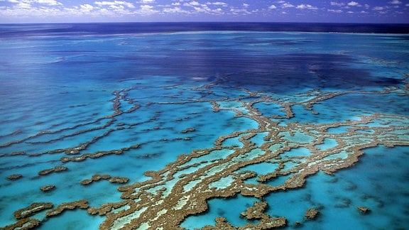 Great Barrier Reef von oben