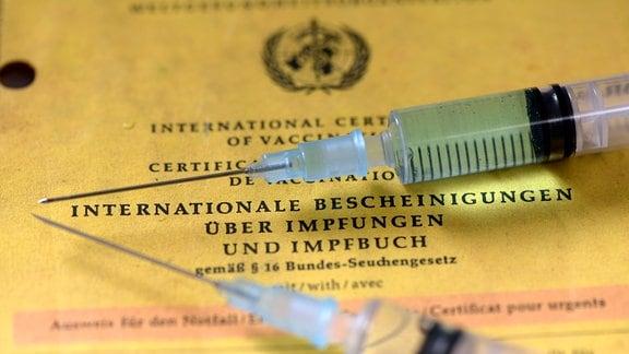 Impfpass liegt auf dem Tisch mit zwei Spritzen