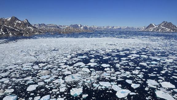 Eisschollen auf einem See in Grönland