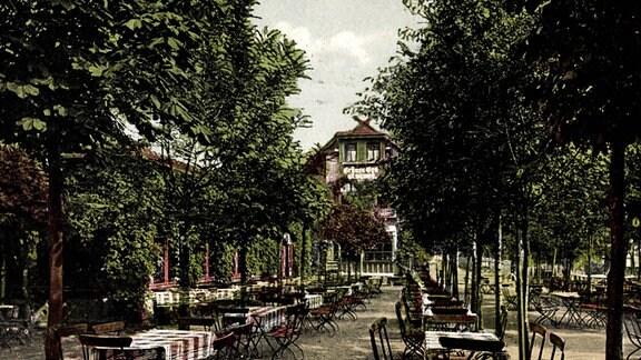 Historische Postkarte, Tischreihen mit Stühlen zwischen Bäumen