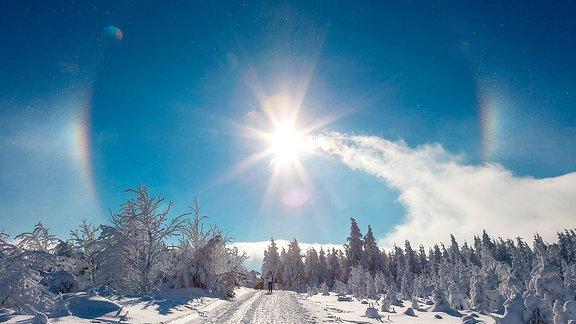 Halo- Erscheinung mit Zirkumzenitalbogen und Nebensonnen, in der Luft glitzern die Eiskristalle, auf dem Weg zum Fichtelberg, Kurort Oberwiesenthal.