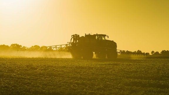 Traktor fährt über ein Feld und spritzt Herbizide. Idyllische Stimmung mit warmen Licht, Seitenansicht.