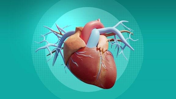 Herzpflaster