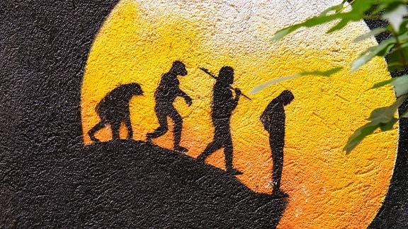 Graffiti Evolution - Vom Affen zum Homo sapiens am Abgrund.