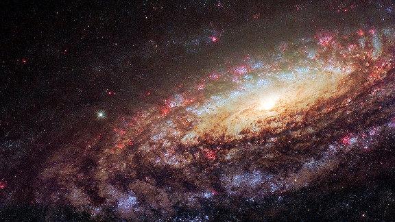 Die Spiralgalaxie NGC 7331, die bereits 1784 vom Astronomen William Herschel entdeckt wurde. Sie ist in Größe und Form unserer Milchstraße vergleichbar. Lediglich das Zentrum unterscheidet sich von dem unserer Galaxie: Es rotiert in die entgegengesetzte Richtung zu den umgebenden Galaxiearmen.