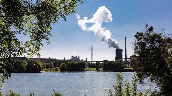 Hüttenwerke Krupp Mannesmann hinter den Streuobstwiesen und dem Deich am Rhein