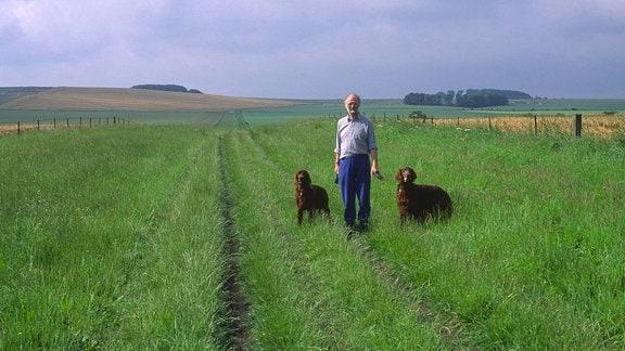 Ein Mann geht mit zwei Hunden spazieren.