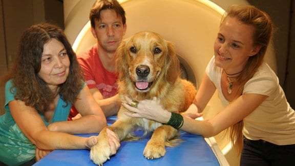 A dog and researchers (Márta Gácsi (left), Attila Andics, Anna Gábor (right)) at the scanner.