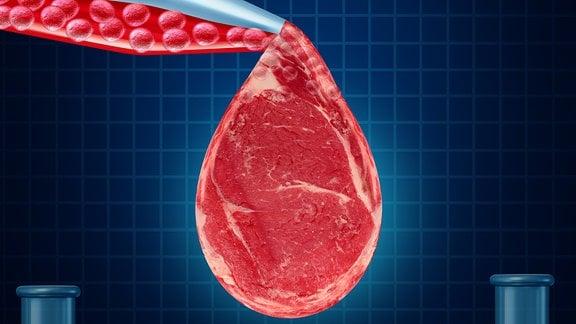 Im Reagenzglas gezüchtetes Fleisch in Tropfenform an einer Pipette