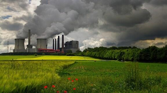 Die qualmenden Kühltürme eines Kraftwerks