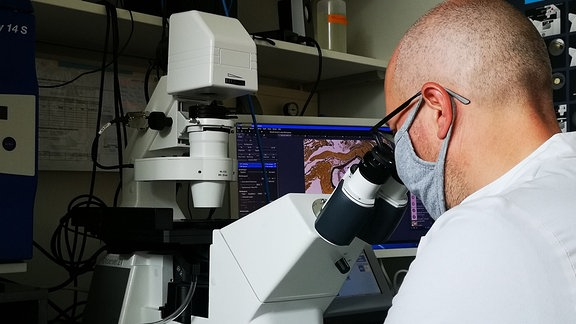 Ein Mann im weißen Laborkittel sitzt vor einem Mikroskop und schaut hinein. Im Hintergrund zeigt ein Bildschirm das Bild im Mikroskop.