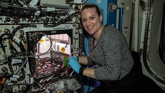 Kate Rubins ISS - Radieschen