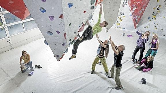 Sieben Frauen und Männer betreiben Boulder-Sport in der Halle.
