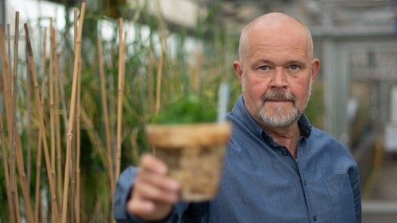 Wissenschaftler Andreas Houben hält einen Topf mit Getreidepflanzen in der Hand.