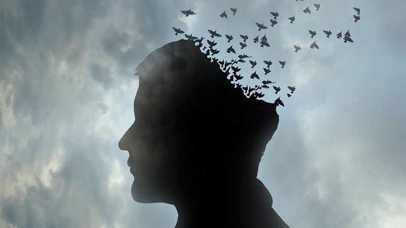 Kopf eines Mannes löst sich in wegfliegenden Vogelschwarm auf