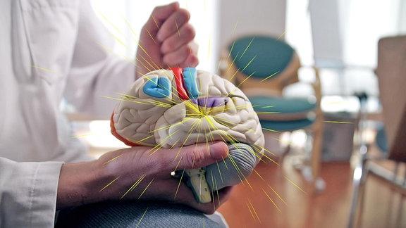 Strahlen gehen von einer markierteen Stelle auf dem Modell eines menschlichen Gehirns, das von einer Person gehalten wird, aus.