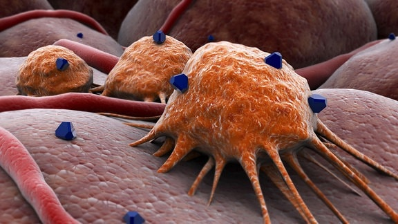 Illustration - Reaktion einer Krebszelle auf medikamentöse Behandlung