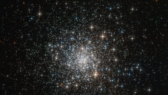 Eine Aufnahme des Kugelsternhaufens NGC 4147.