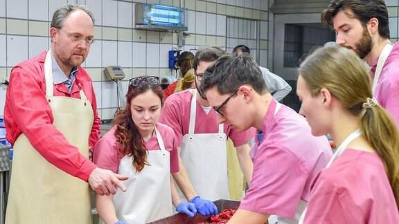 Der Berliner Tierpathologe Prof. Achim Gruber lehrt mehreren Studierenden im Obduktionssaal das Sezieren von Tieren.