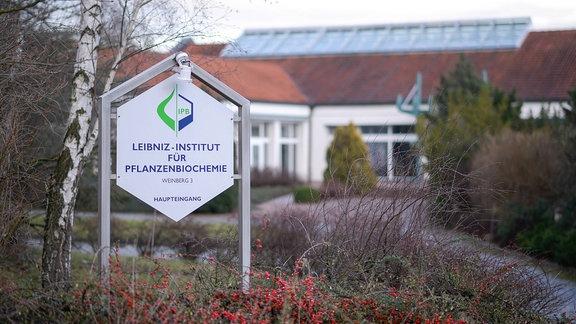 Leibniz-Institut für Pflanzenbiochemie IPB in Halle