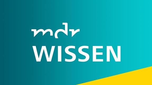 MDR Wissen - Logo