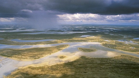 Makgadikgadi Salzpfanne im Nordosten von Botswana