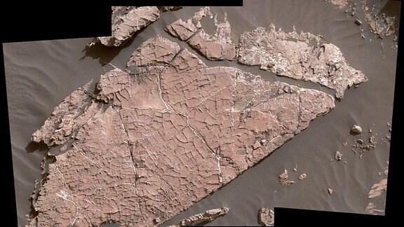 Mars Oase