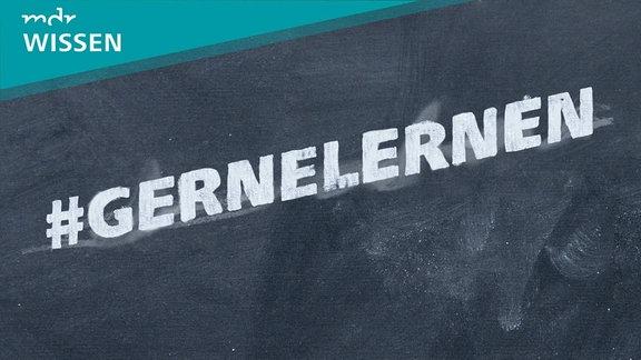 Schriftzug #GERNELERNEN mit Kreide auf Schiefertafel gemalt. Logo: MDR WISSEN