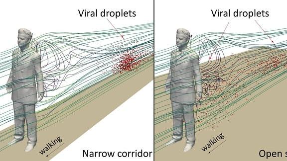 Grafische Darstellung der Verteilung von viralen Aerosoltröpfchen beim Gehen in engen und weiten Räumen