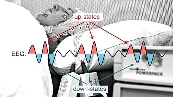 Messung der Hirnströme im Schlaflabor.