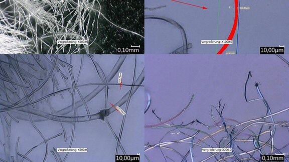 Mikroskopische Bilder von textiler Mikroplastik