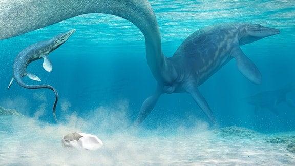 Mosasaurus Eiablage - stilisiert