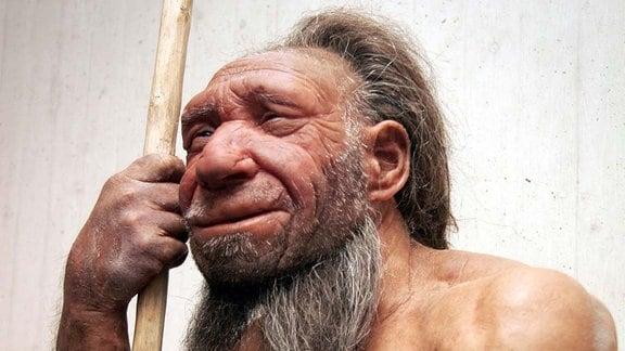 Rekonstruktion eines Neandertalers im Neandertalmuseum in Mettmann