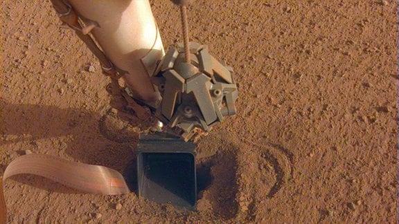 Aufnahme des Schaufelarms von Insight. Links im Bild sind ist die Kommunikationsleitung des Maulwurfs zu sehen, der sich genau unter der Schaufel im Boden befindet.