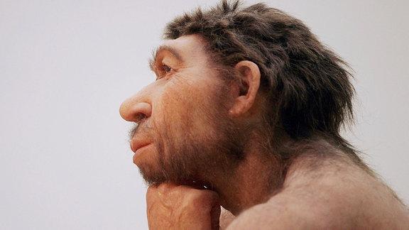 Präneandertaler-Figur Der Denker im Landesmuseum für Vorgeschichte in Halle