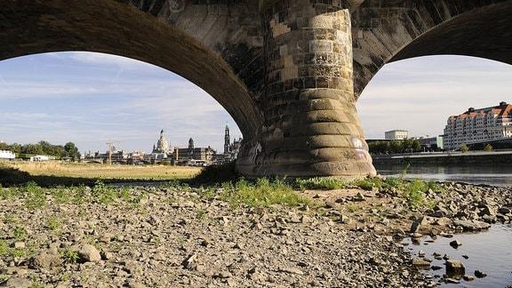 Niedrigwasser an der Elbe bei Dresden.