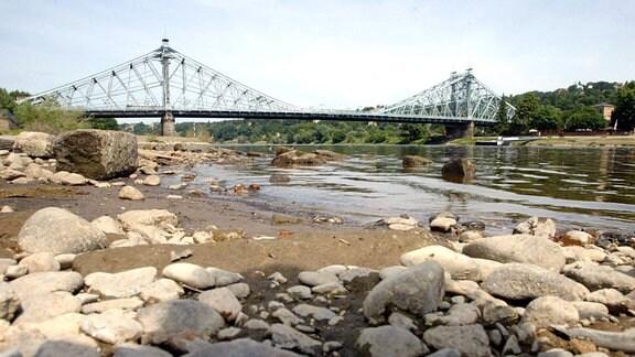 Trockengelegtes Ufer der Elbe in Dresden.