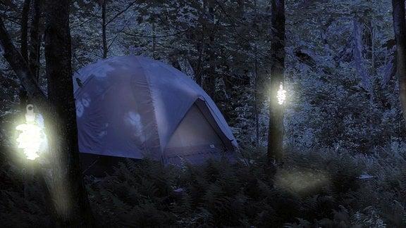 Neben einem Zelt hängen Lichte an Bäumen