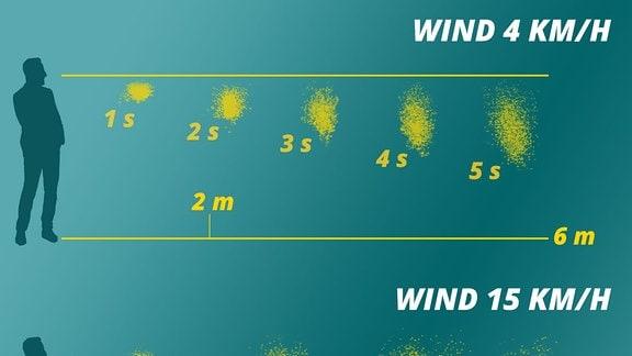 Bild zeigt eine Grafik, die veranschaulicht, dass bei wenig Wind Speichelpartikel schneller zu Boden fallen als bei viel Wind, sie sich aber nicht so sehr zerstreuen wie bei viel Wind)