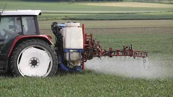 Getreidefeld wird gespritzt.