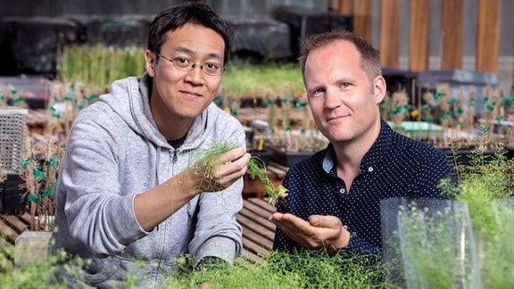 Zwei Männer sind umgeben von grünen Pflanzen und halten eine davon in die Kamera.